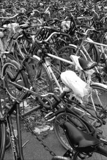 Biciclette_01